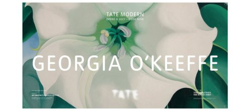 Georgia O'Keeffe @ Tate Modern 2016